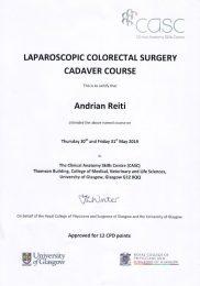 Laparoscopic Colorectal Surgey Cadaver Course